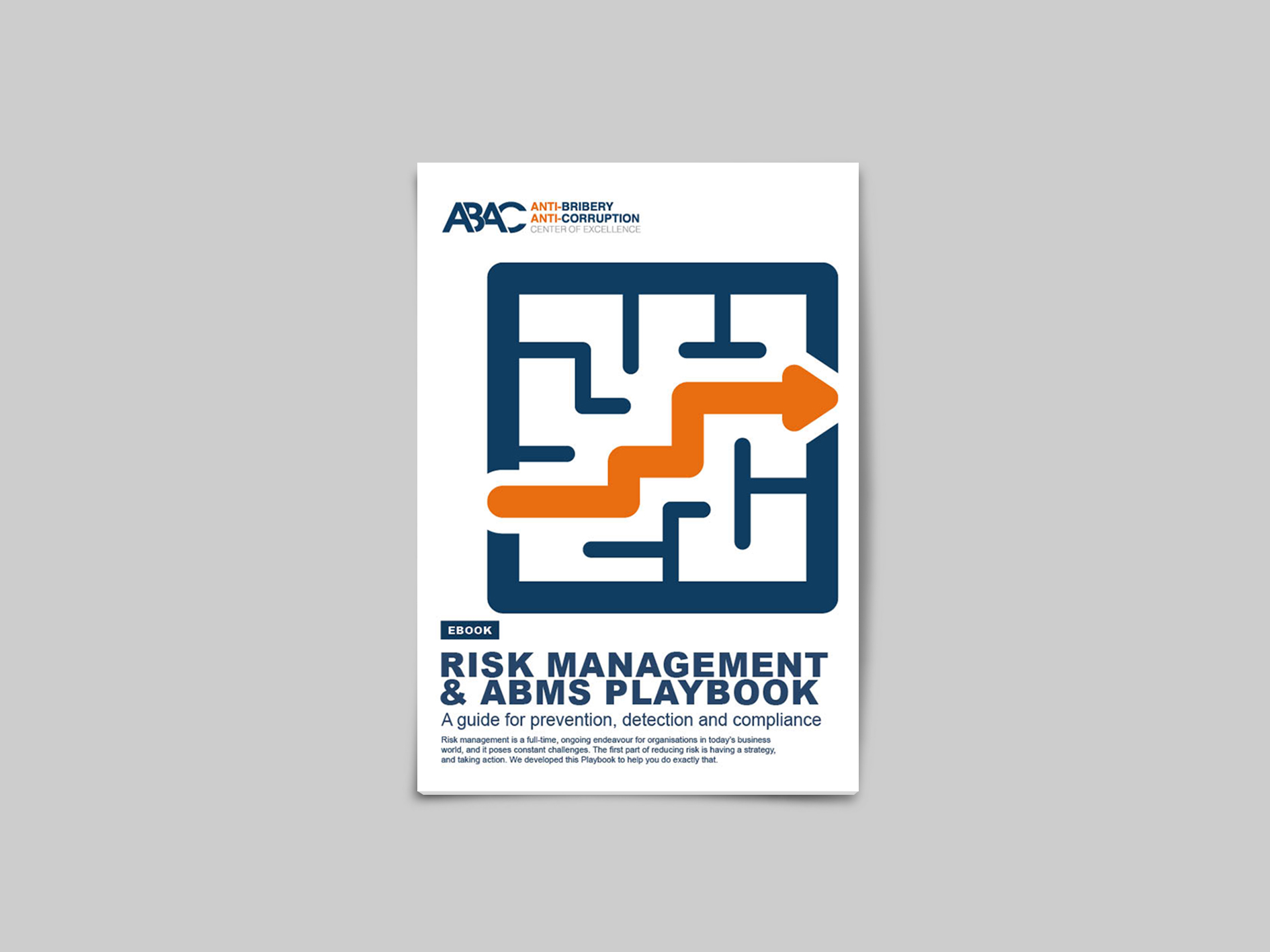 Playbook on Risk management and ABMS: All you need to know and more!